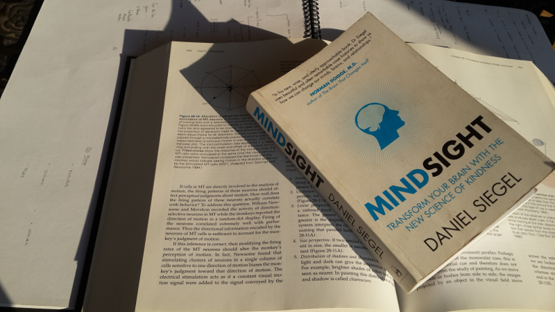Memorability's Book Club: Mindsight By D Siegel
